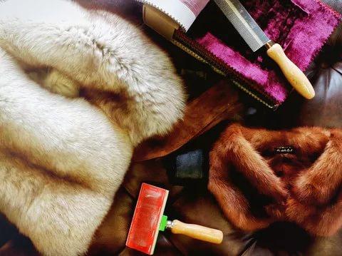 Как хранить норку в домашних условиях 540
